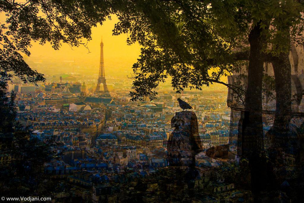 Paris Piegeon